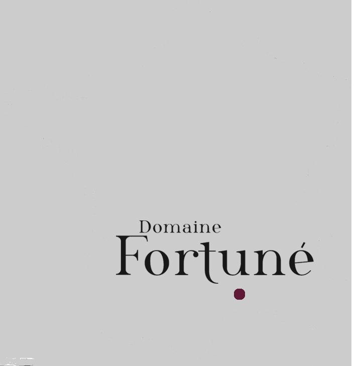 Localisation géographique du domaine : sud de la France, Gard